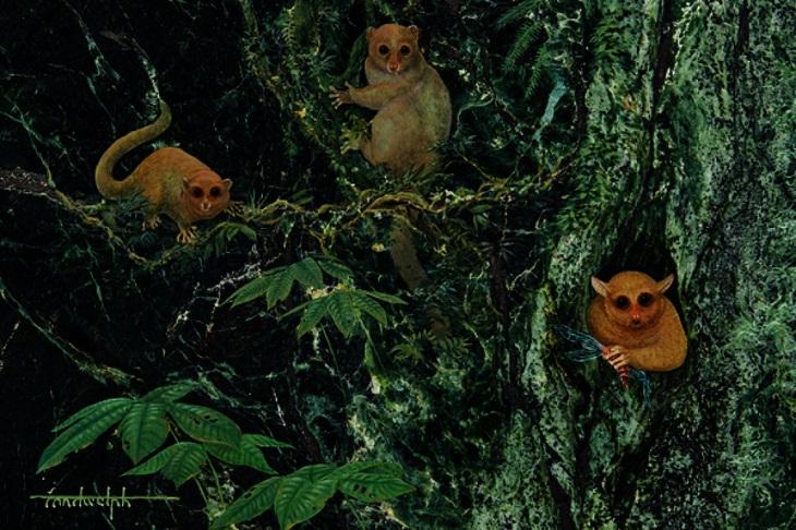 Describen primates extintos hace 40 millones de años