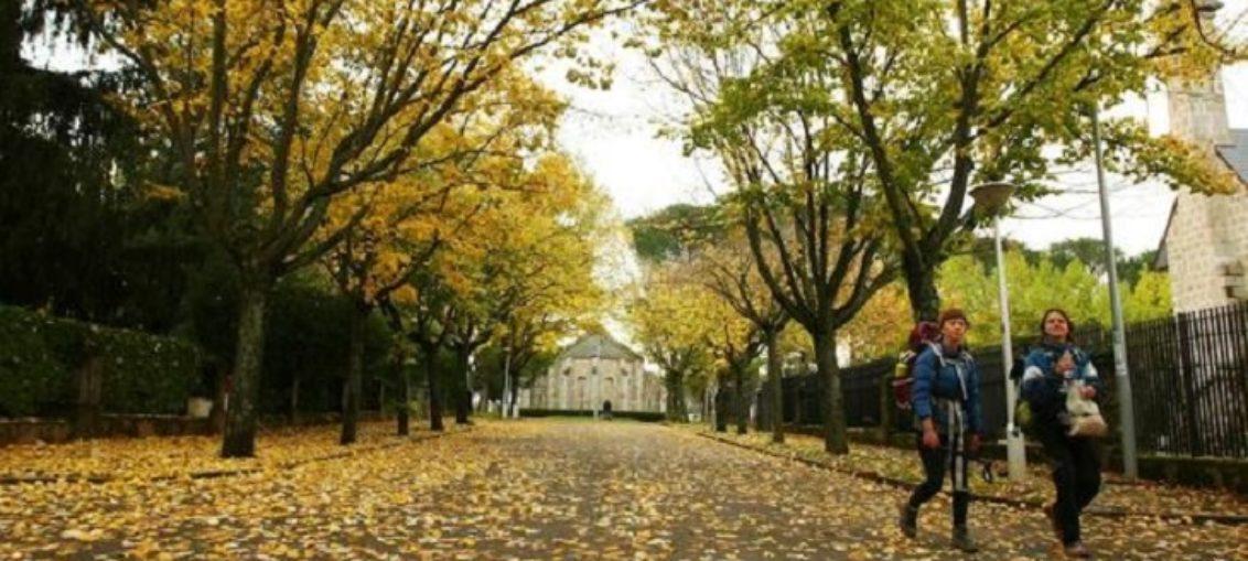 Este otoño será más cálido de lo normal