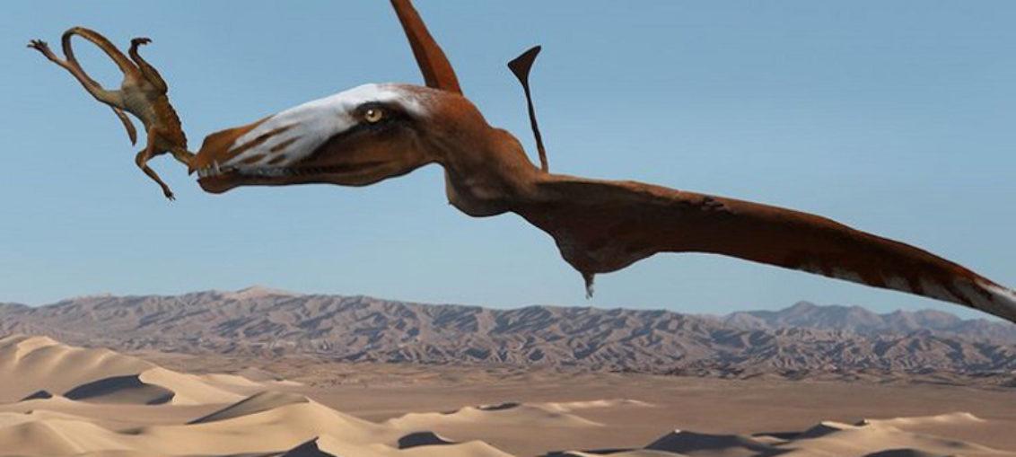 Hallan raro pterosaurio triásico en Utah