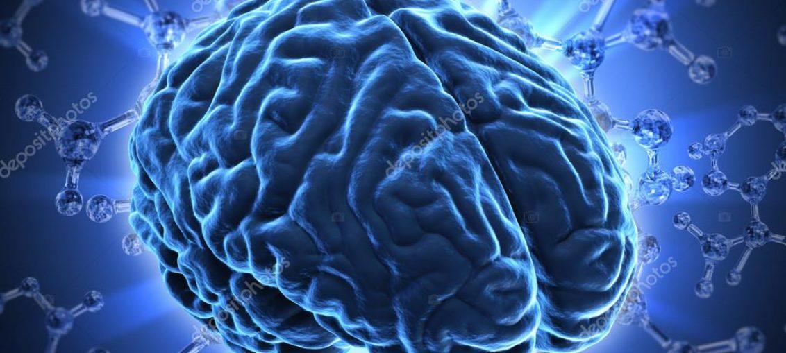 Nueva sinapsis artificial basada en las del cerebro humano