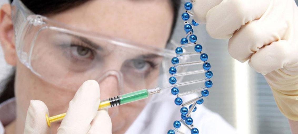 Terapia génica con telomerasa no es riesgo de cáncer
