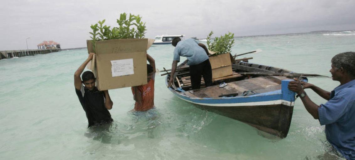 ONU recuerda a los Estados obligación de prevenir cambio climático